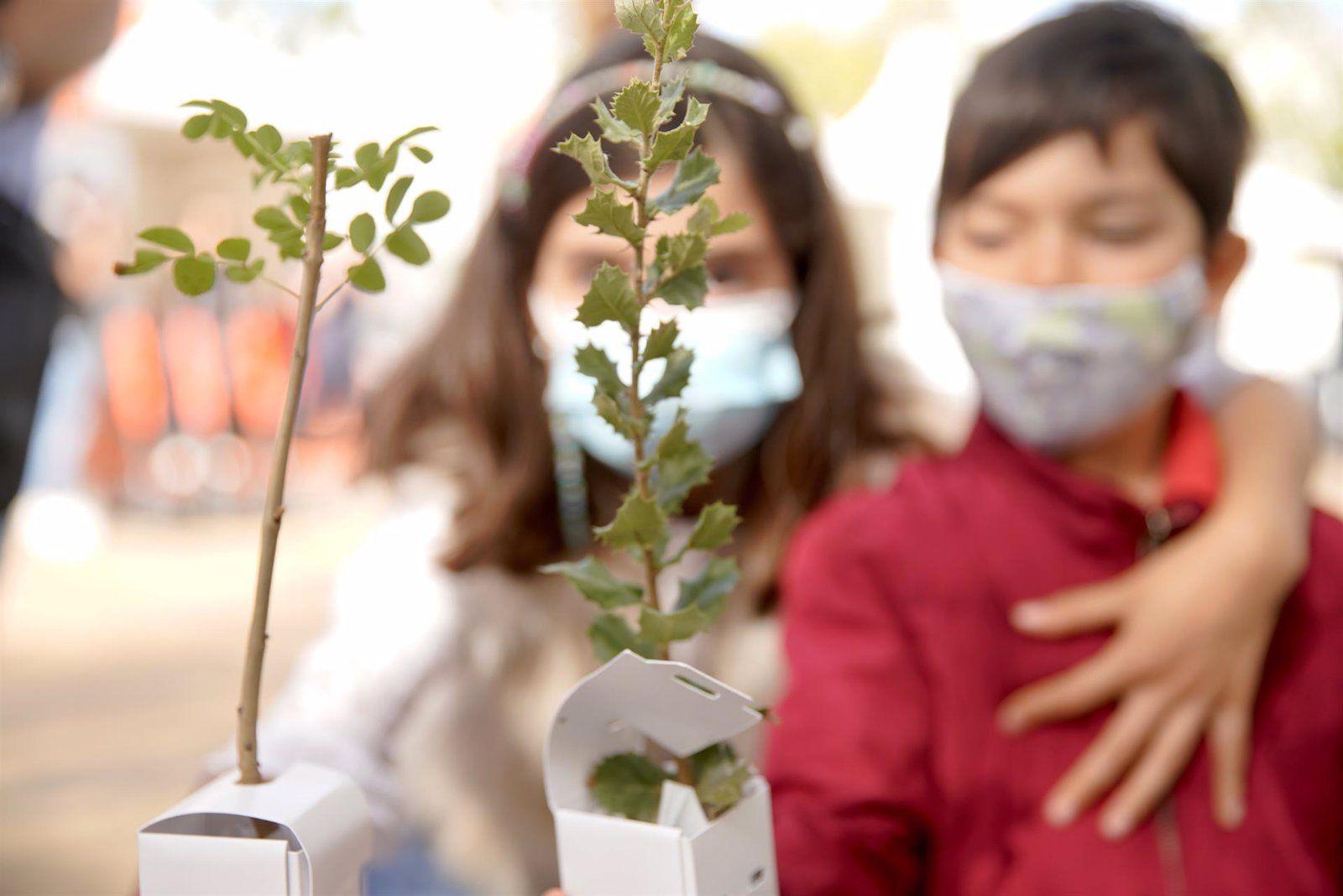 Plantación 1.000 árboles Las Rozas